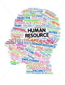 Nuggets om humn resources (HR) from the informsation badger