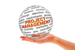 Project Management nuggets from the information badger